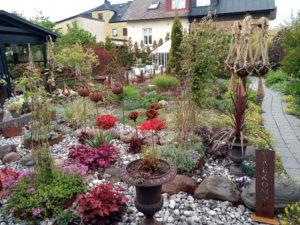 wilsonparkgarden trädgårdsrundan